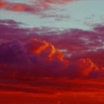 Kine Hjeldnes – Morpheus